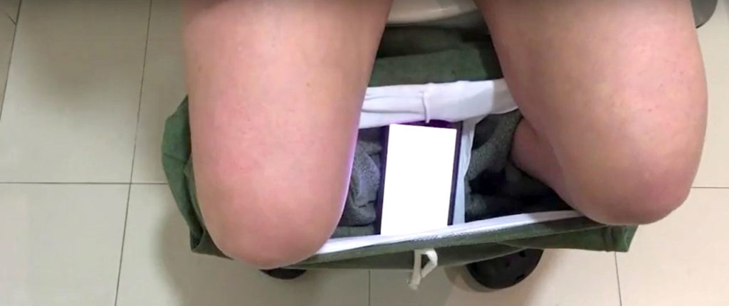 Throughout the video, the camera focuses on a toilet located in a bathroom.  A person in sweatpants and clogs who is only filmed up to the middle of their thighs enters the bathroom. In slow motion, and with interference noises in the background, the video shows how they pull down their pants while bending their knees to take a seat on the toilet. In their panties one can see a smartphone showing a menstrual app. After sitting on the toilet for a short while, the person takes some toilet paper to wipe themselves, throws it into the toilet, pulls up their pants, and flushes. Then they walk out of the bathroom. The last image shows the same scene as in the beginning: a toilet in a bathroom. The video is played in a loop.